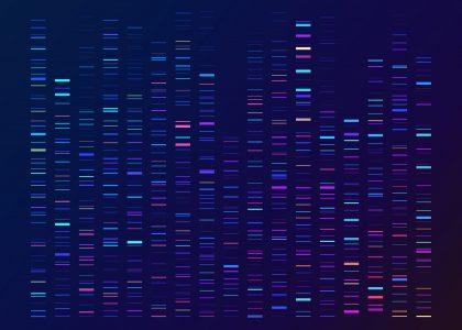 image DNA Sequencing Gel